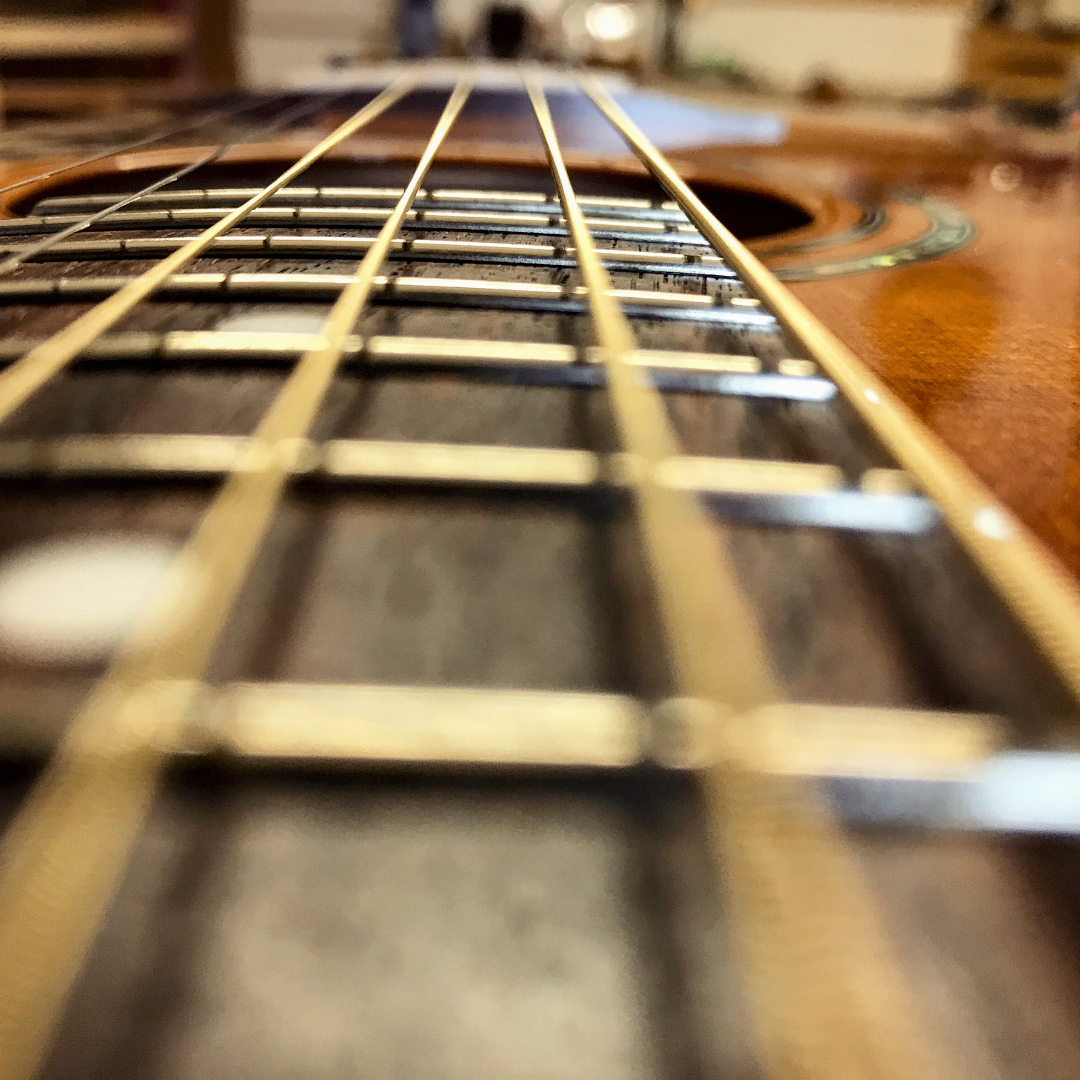 fingerboard, fretboard, guitar action, fret buzz