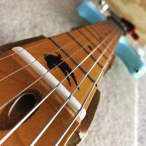 guitar nut, fretboard inlay, electric guitar setup, truss rod adjustment