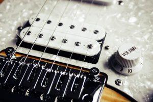 guitar bridge, guitar pickups, humbucker, volume pot, guitar saddles